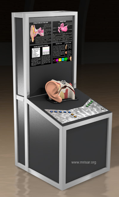 MRISAR's Interactive Ear Medical Exhibit