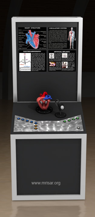 MRISAR's Interactive Heart Medical Exhibit