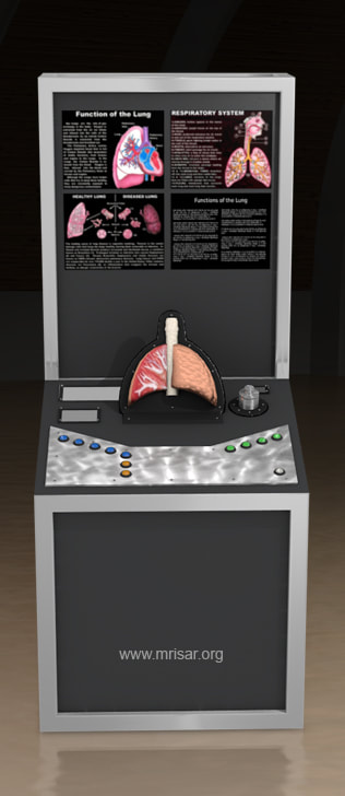 MRISAR's Interactive Lung Medical Exhibit