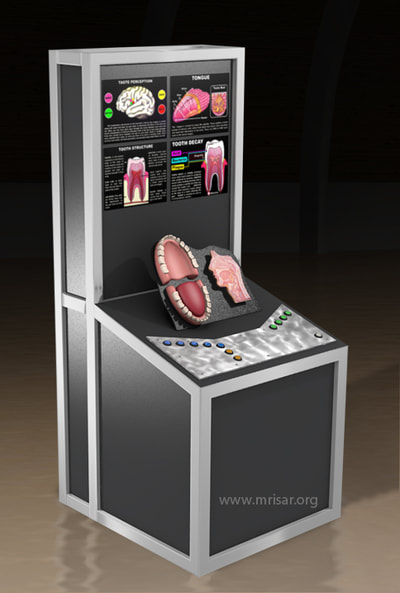 MRISAR's Interactive Tongue & Teeth Medical Exhibit