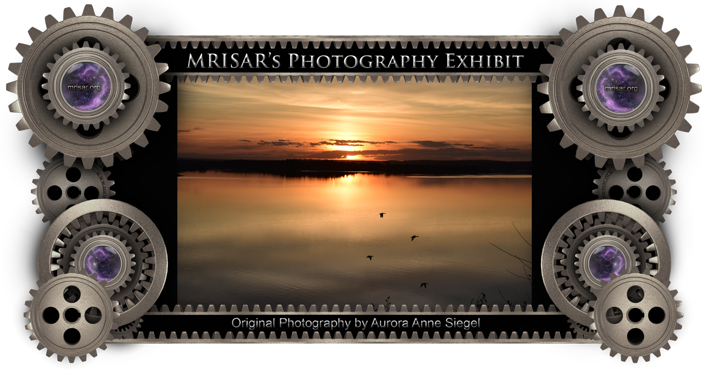 Sunset Flyers; Original Photography of Aurora Anne Siegel, an awarded, published and exhibited; multi-disciplined artist, photographer, writer and engineer. She is also a member of MRISAR's R&D Team.  Prints of this piece can be any size, but are 24