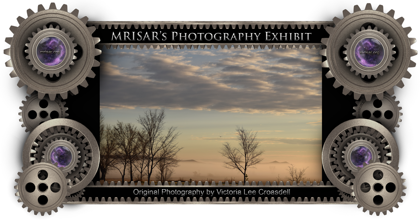 Rolling Mists; original unaltered Photography of Victoria Lee Croasdell, an awarded, published and exhibited; multi-disciplined artist, photographer, writer, poet and engineer. She is also a member of MRISAR's R&D Team.  Prints of this piece can be any size, but are 24